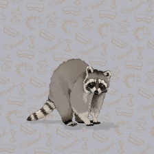 Racoon MERGED copy